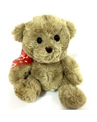 Teddy Bear 5